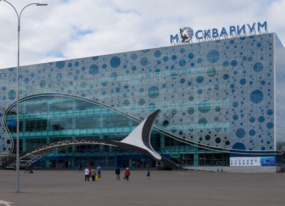 Экскурсии в московский океанариум – Москвариум на ВДНХ