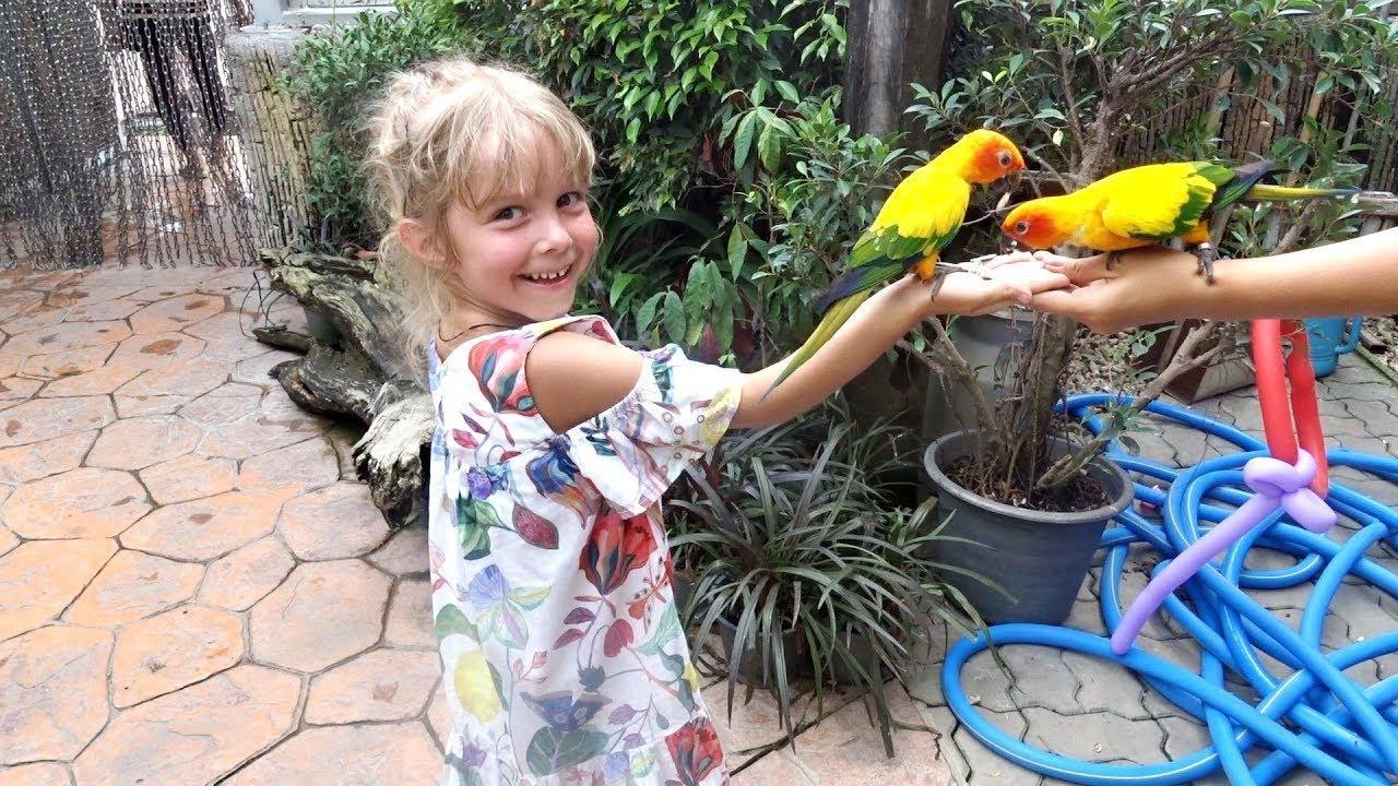 Контактный зоопарк с попугаями и милыми обезьянками